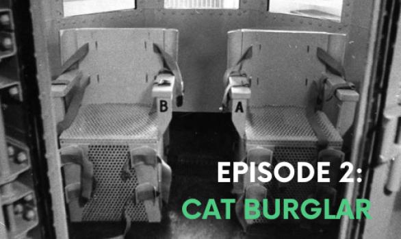 Episode #2: Cat Burglar